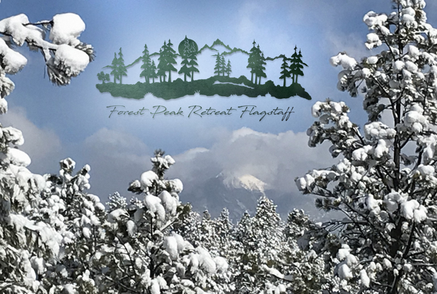 Journey to Forest Peak Retreat: Mountain Top Testimony of