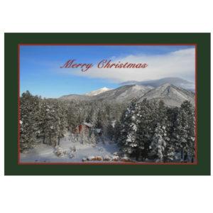 Christmas/Winter 2018 Items