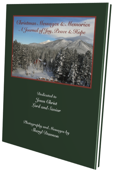 Christmas Journal 2018