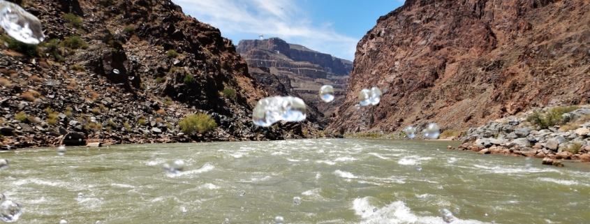 Splash on the Colorado River in Grand Canyon